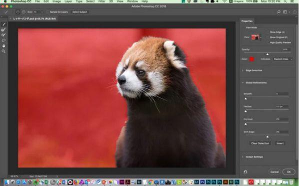 cong-cu-select-subject-tach-nen-nhanh-cua-adobe-cho-windows-mac 4