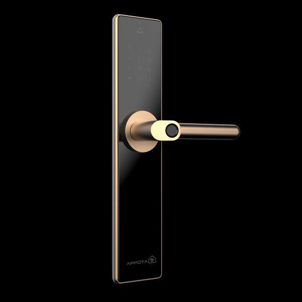 Truyền lại bí kíp khi chọn mua khóa cửa thông minh vân tay 3