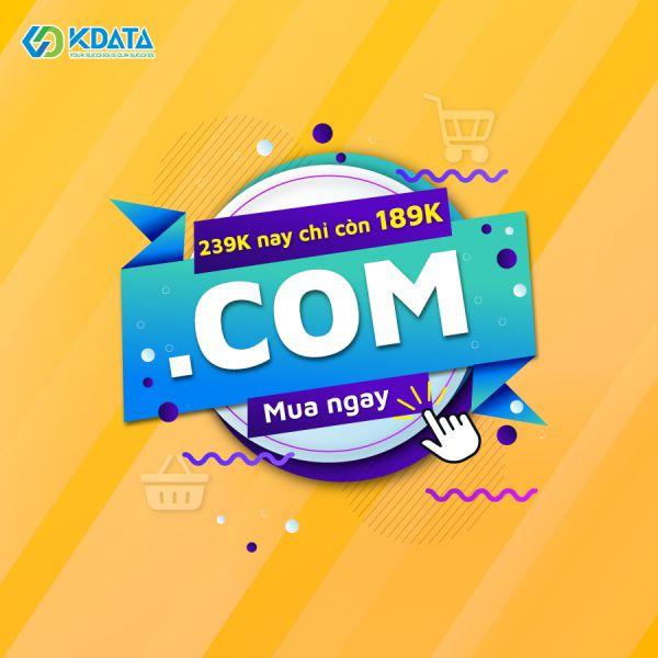 Domain .COM và .NET đang khuyến mại với giá cực sốc 2